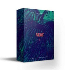 palms hip hop drumkit